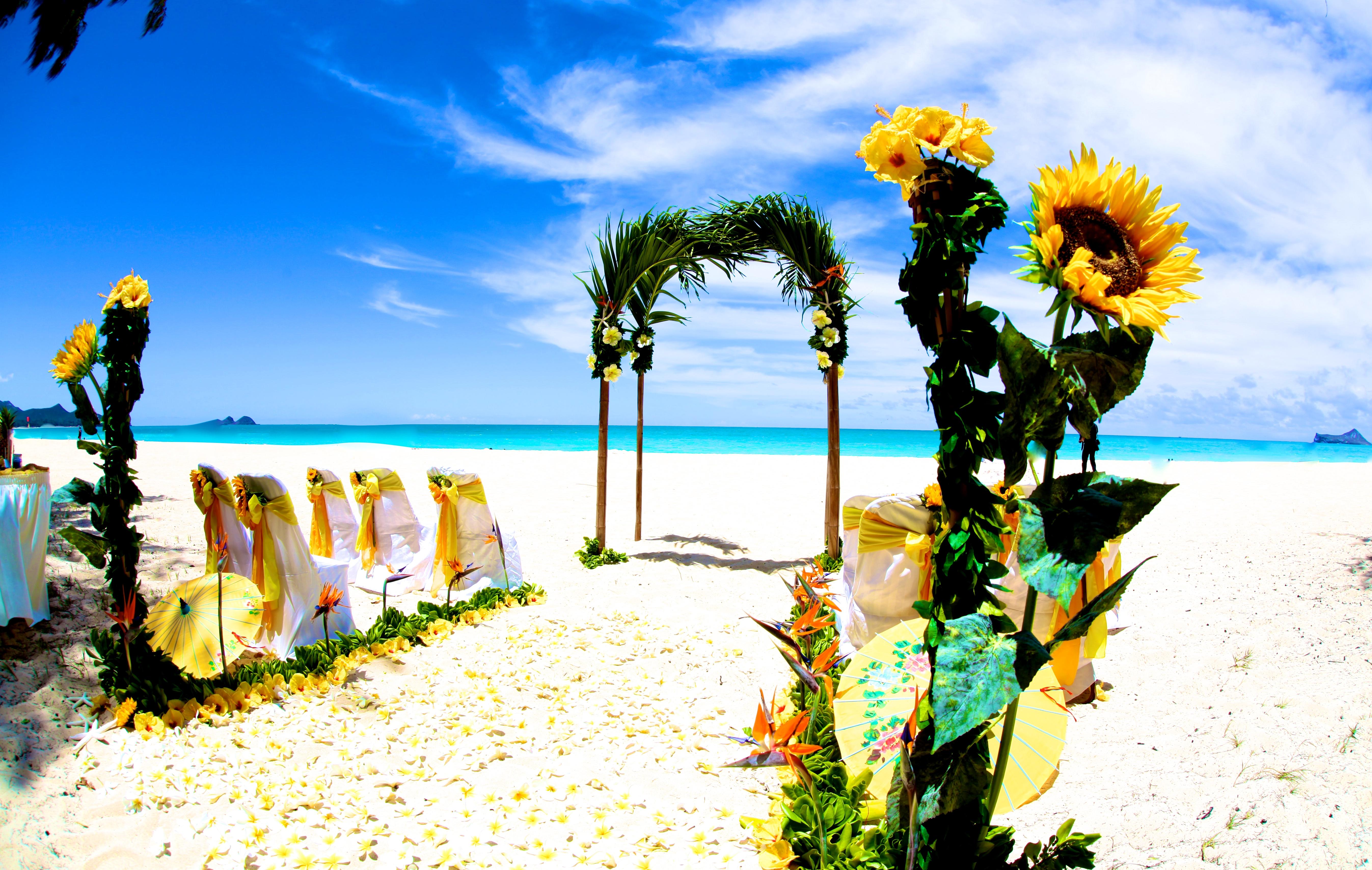 Beach wedding Hawaii 15