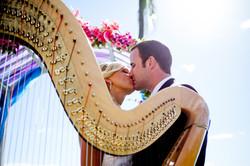 Harpist in Hawaii 4