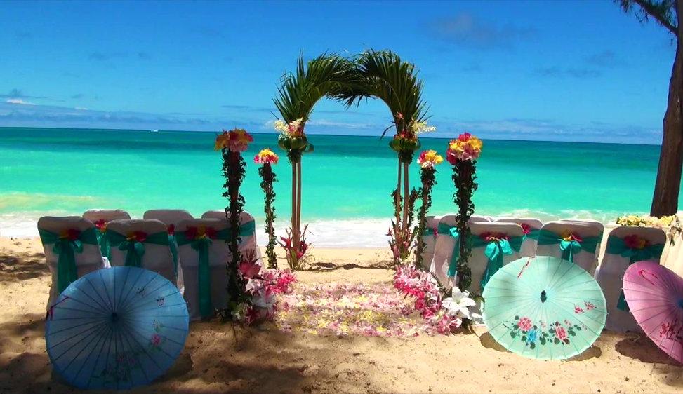 Waimanalo Beach Palm arch setup  *video below*