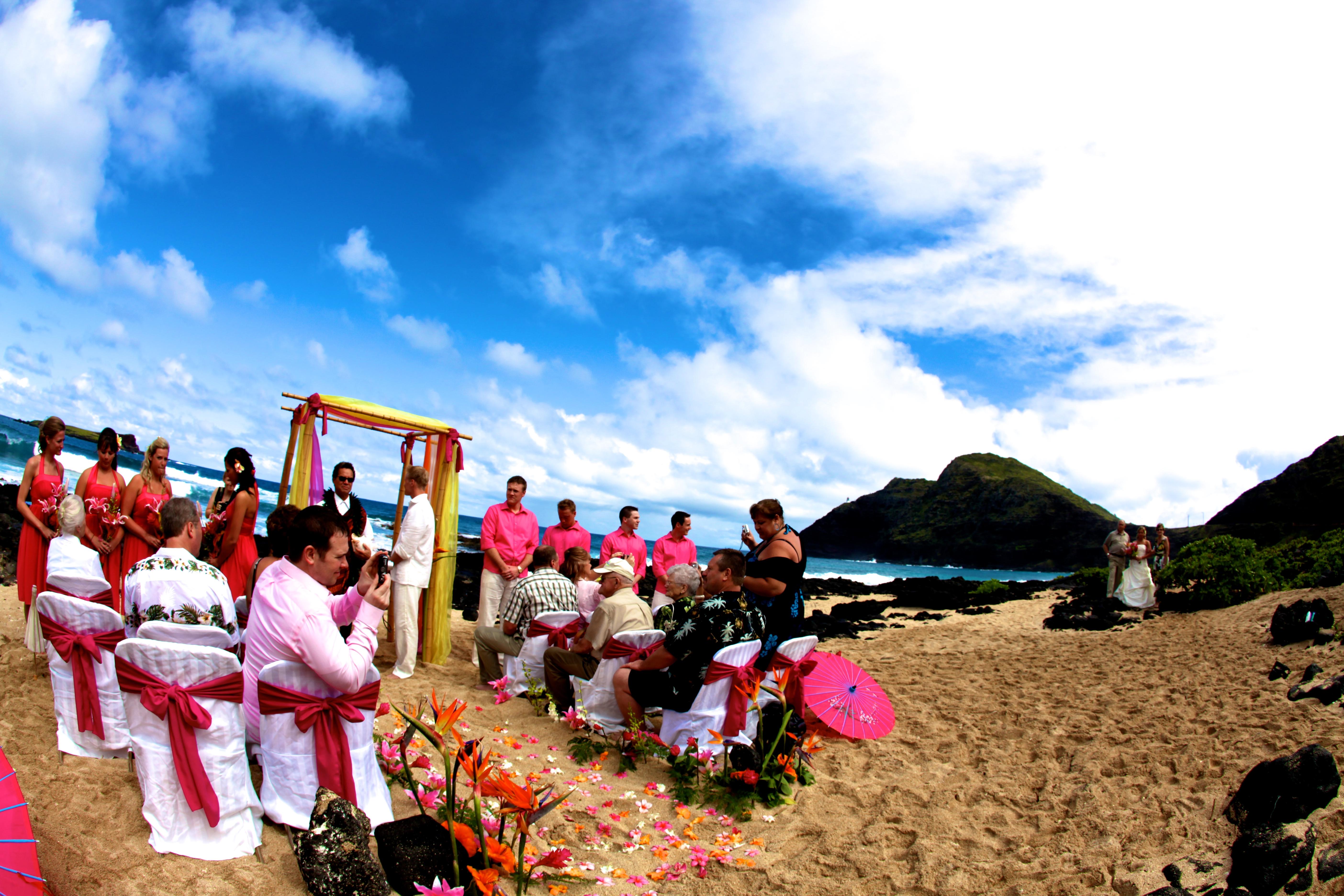 Wedding of Hawaii 3