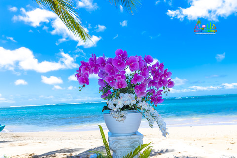 Kahala-resort-beach-in-Hawaii-2-7.jpg