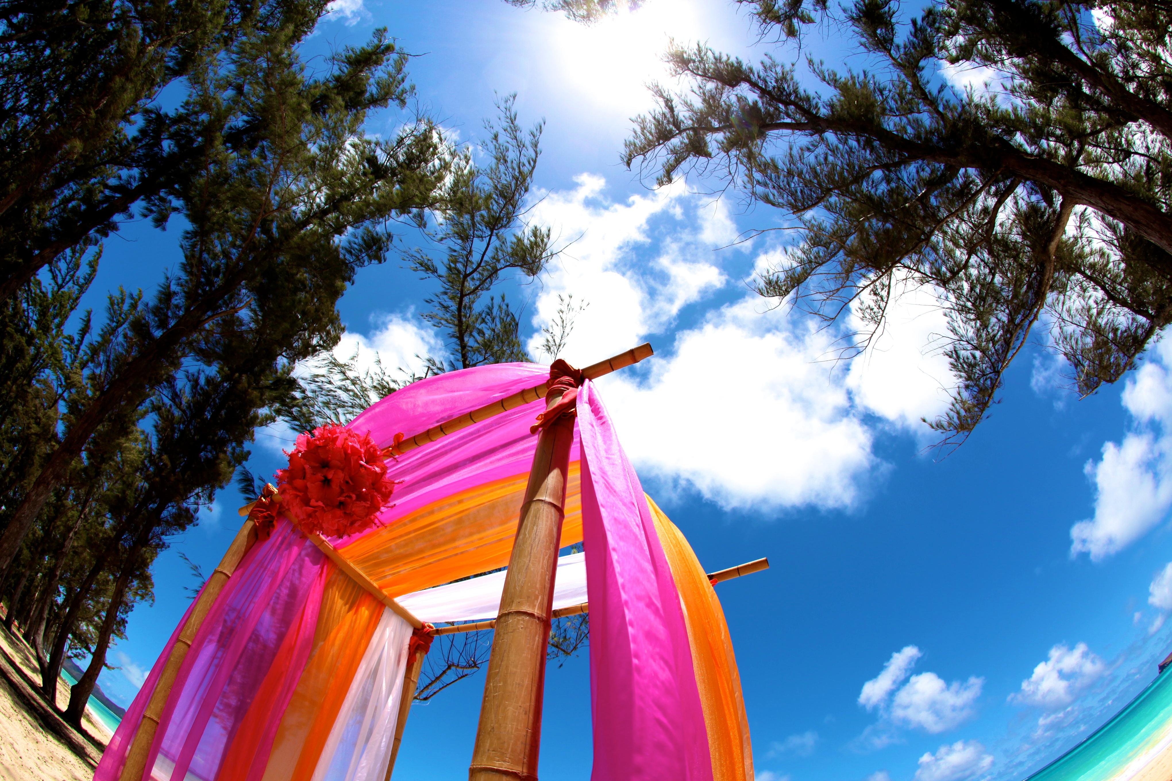 Hawaii Wedding Bamboo Arch 8