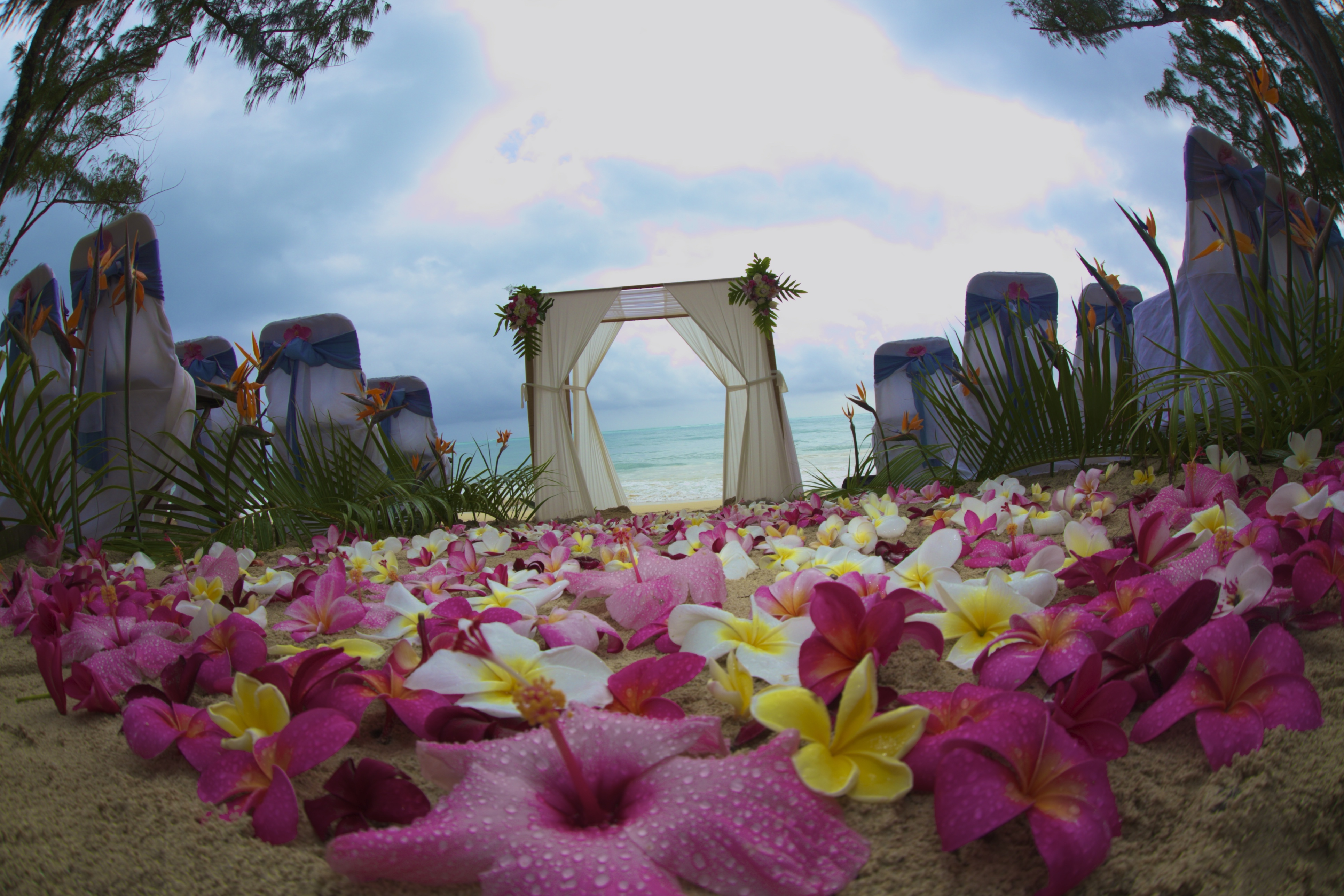 hawaii wedding ceremony -77