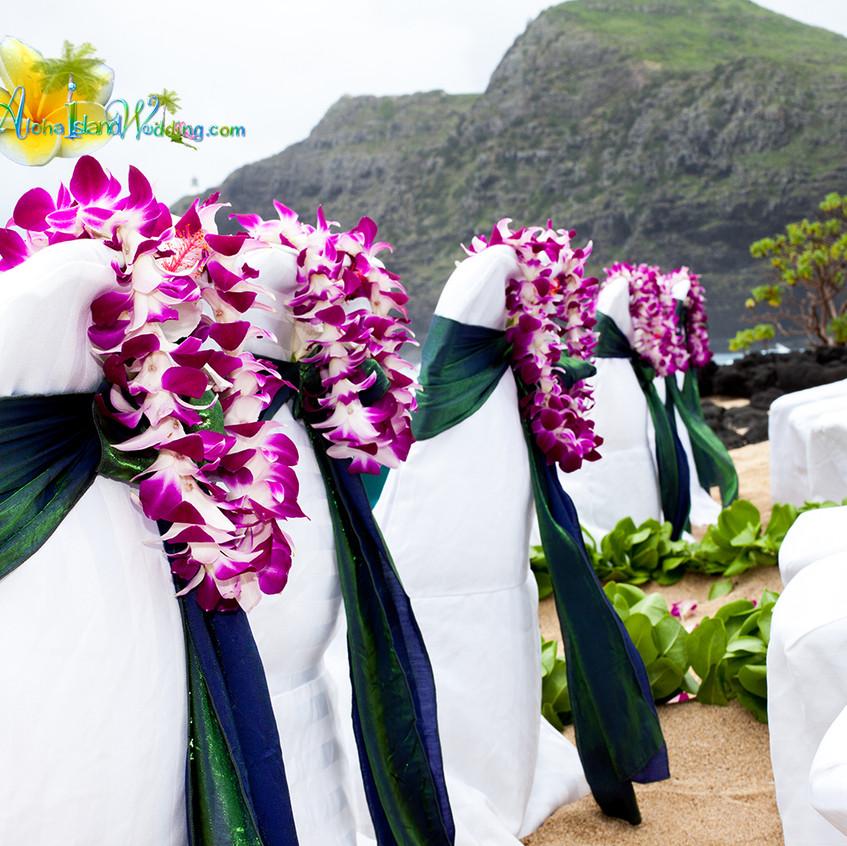Karen & Todd  Wedding in Hawaii 1