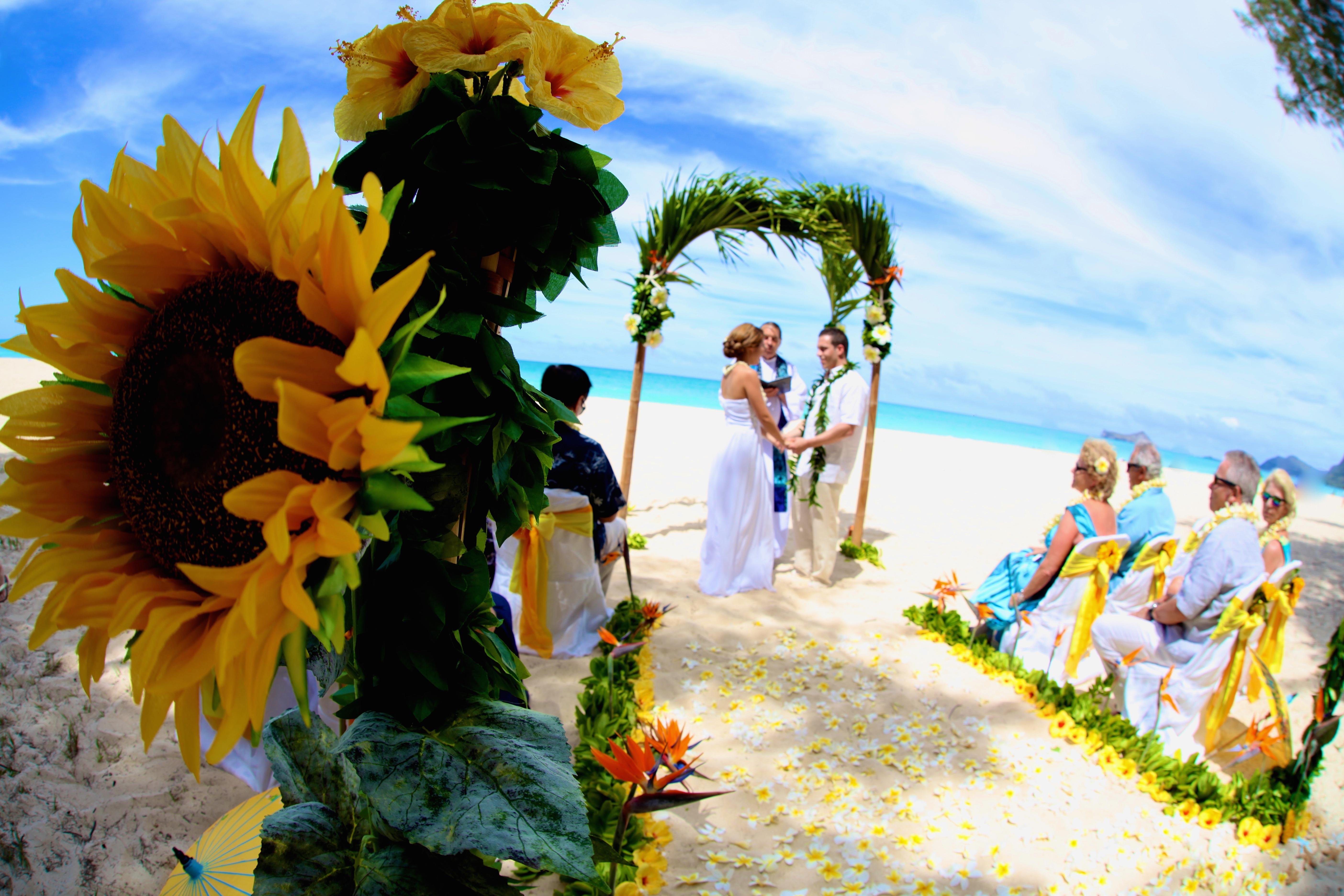 Beach wedding Hawaii 2