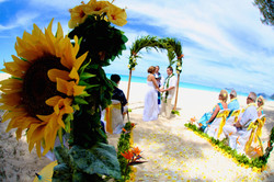 Wedd ceremony 1-33