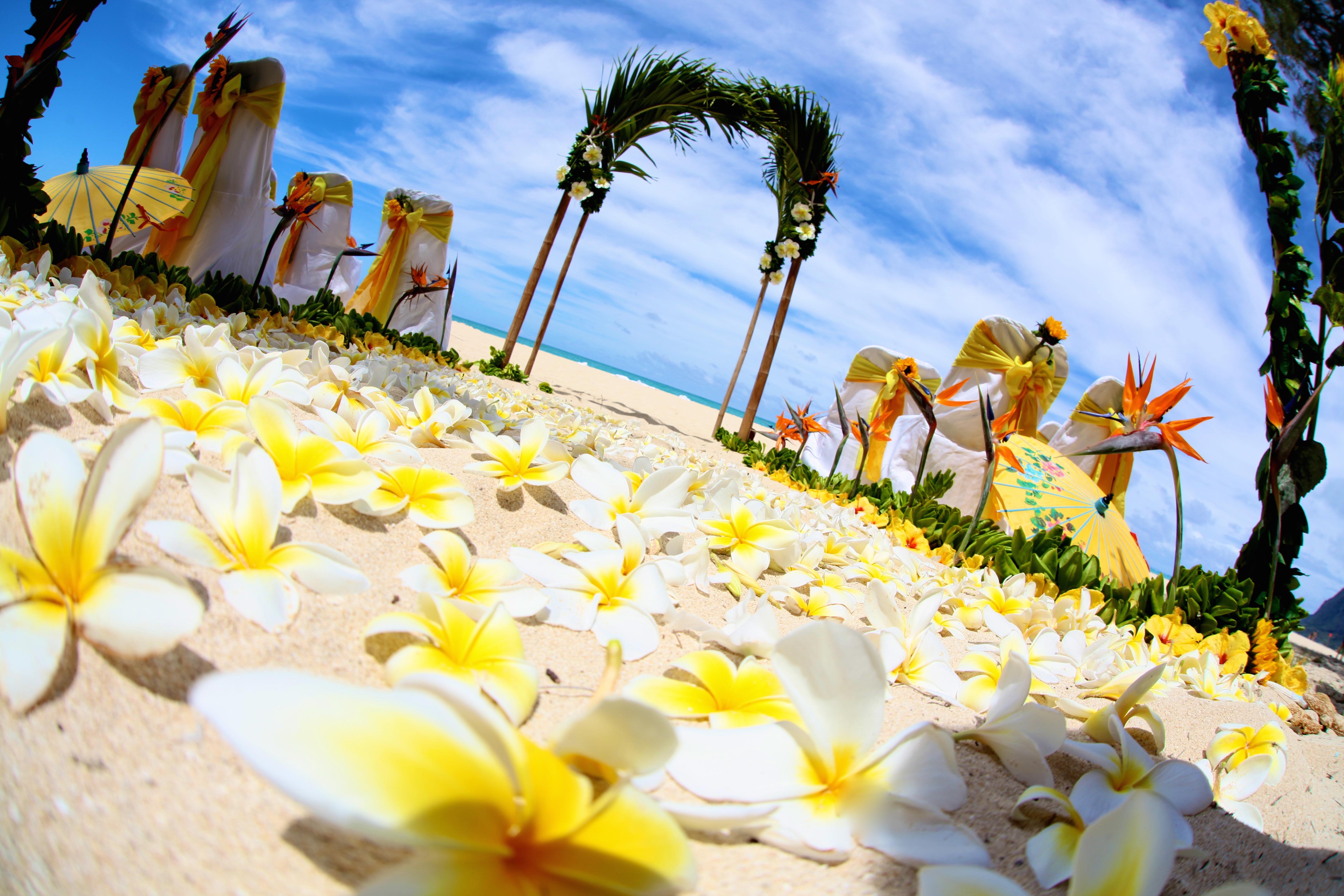 Beach wedding Hawaii 8