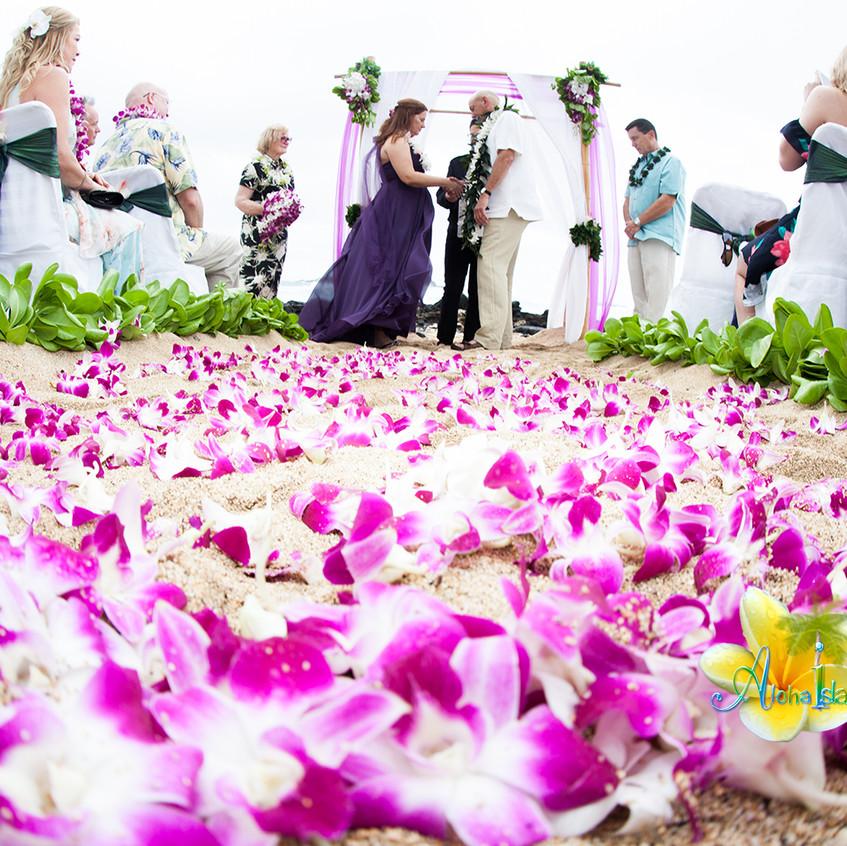 Karen & Todd  Wedding in Hawaii 2
