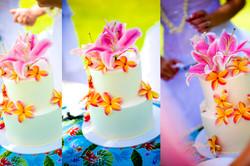 Wedding Cake in Hawaii-12