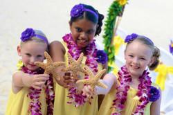 Hawaiian Wedding -185