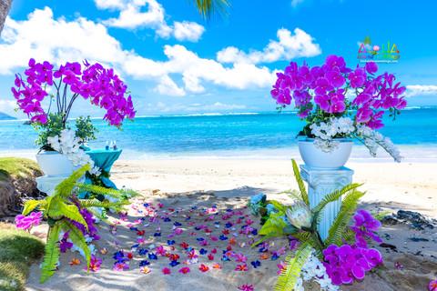Kahala-resort-beach-in-Hawaii-2-2.jpg