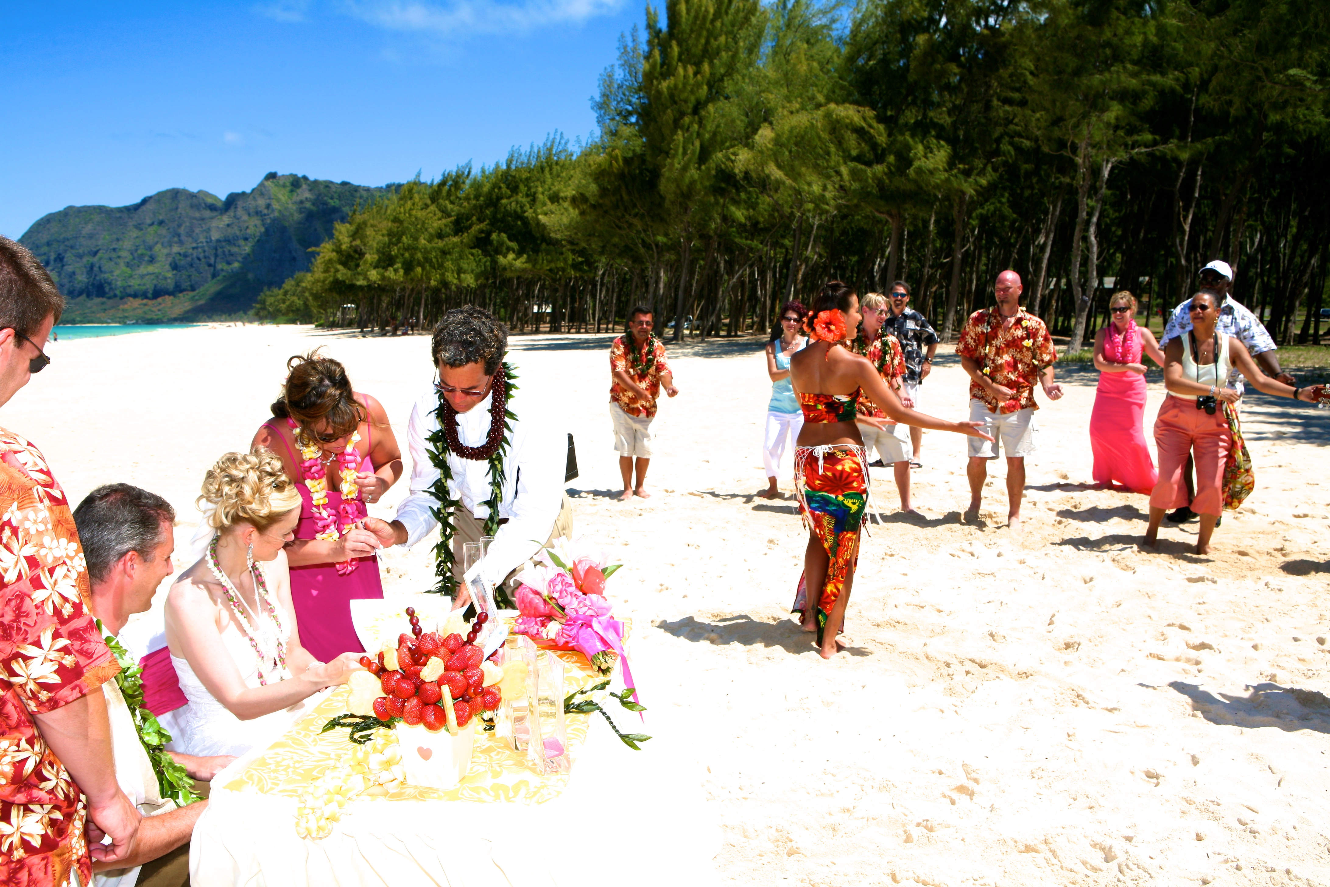 Hawaiian hula dancer with Ukulele 10