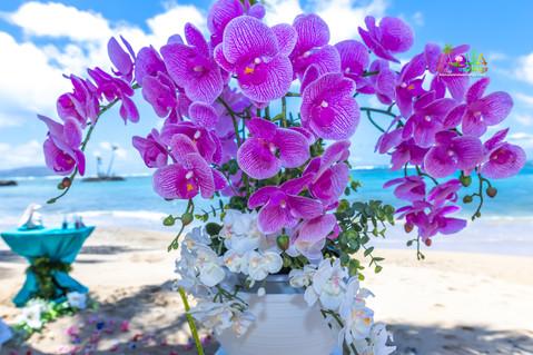 Kahala-resort-beach-in-Hawaii-2-17.jpg