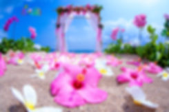 Pink wedding archway for peng.jpg