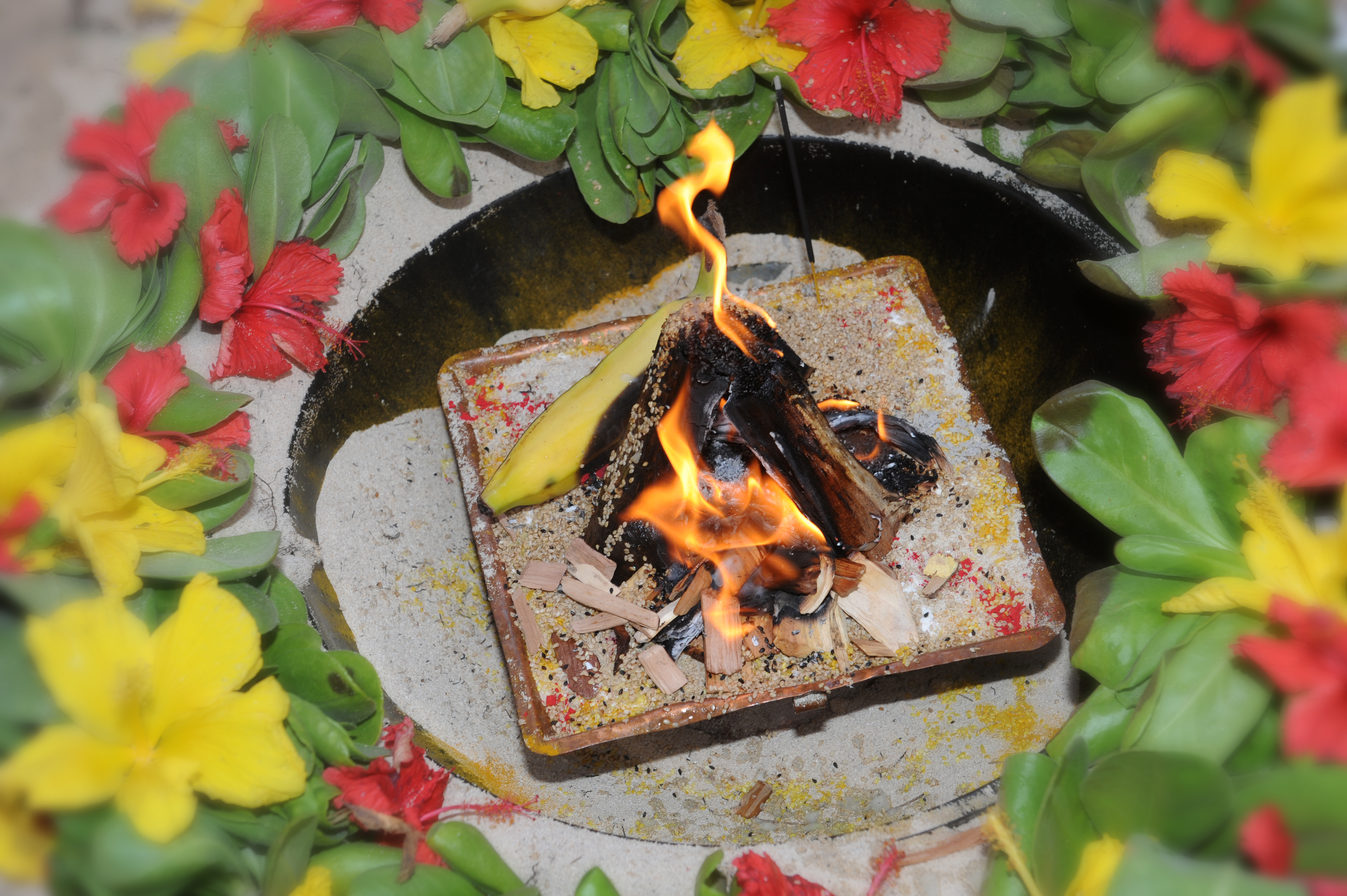 Hawaiian Indian Wedding Ceremony -39