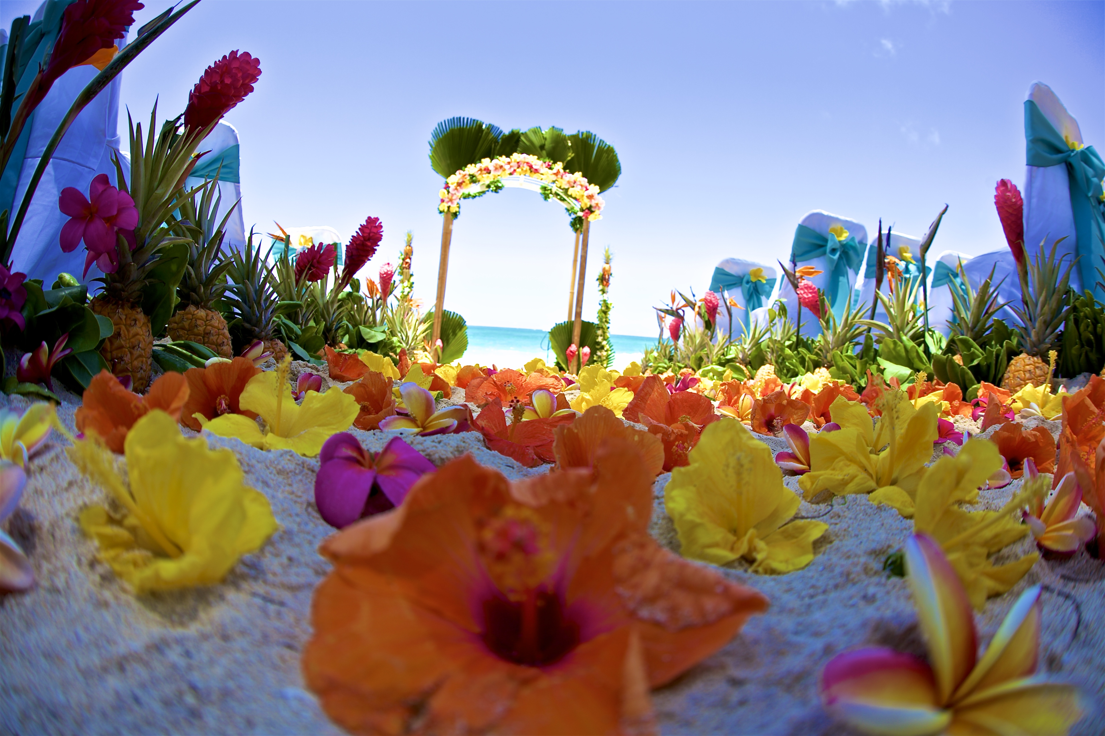 Hawaii weddings, elopements, and Hawaii vow renewals -18