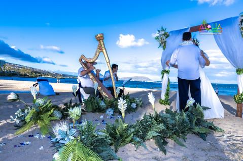 Honolulu-weddings-4-76.jpg