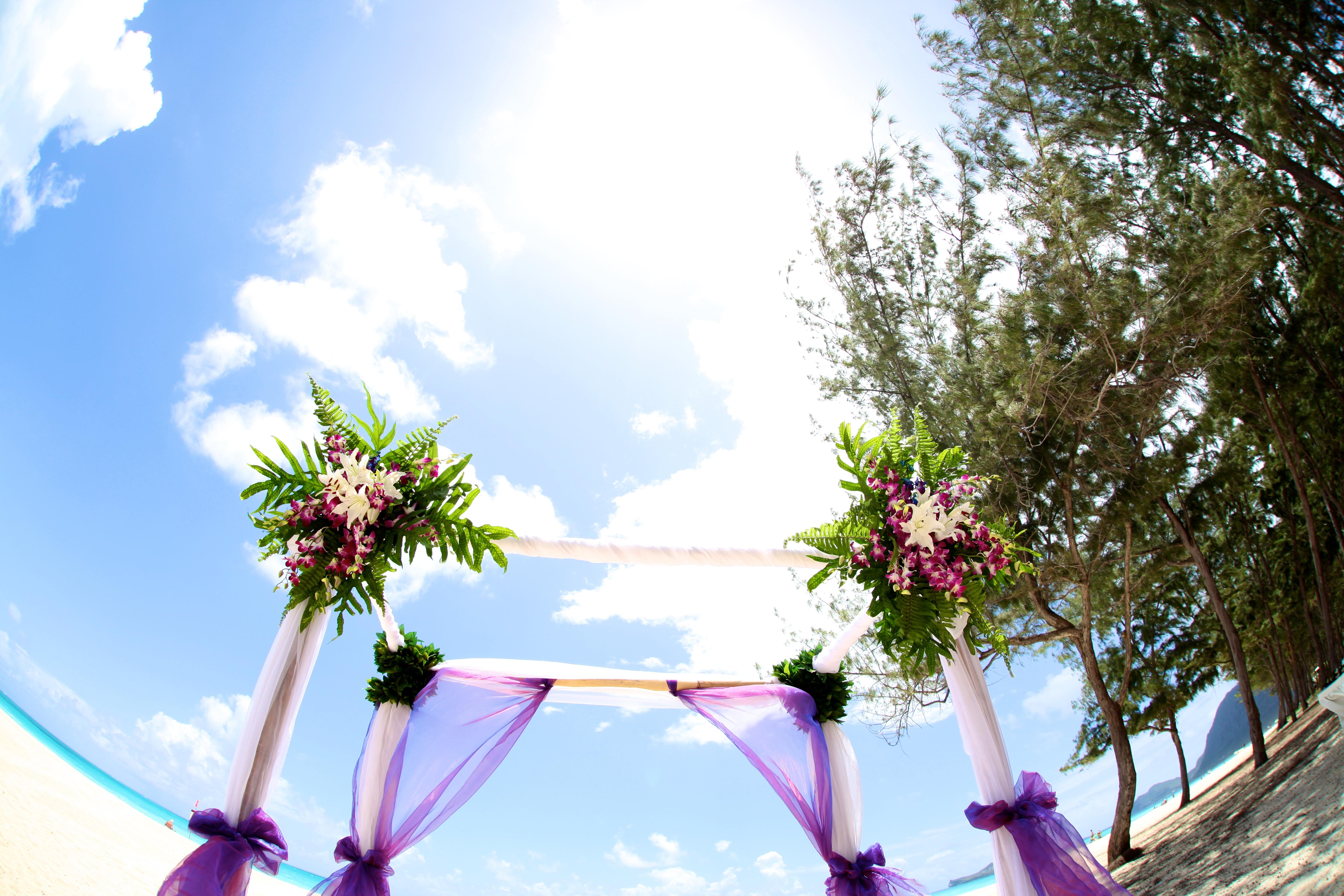 Orchid wedding in Hawaii2