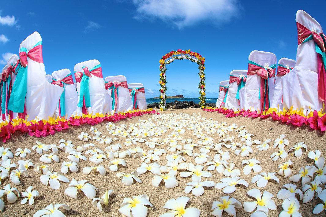 Hawaii Weddings on the Beach of Hawaii