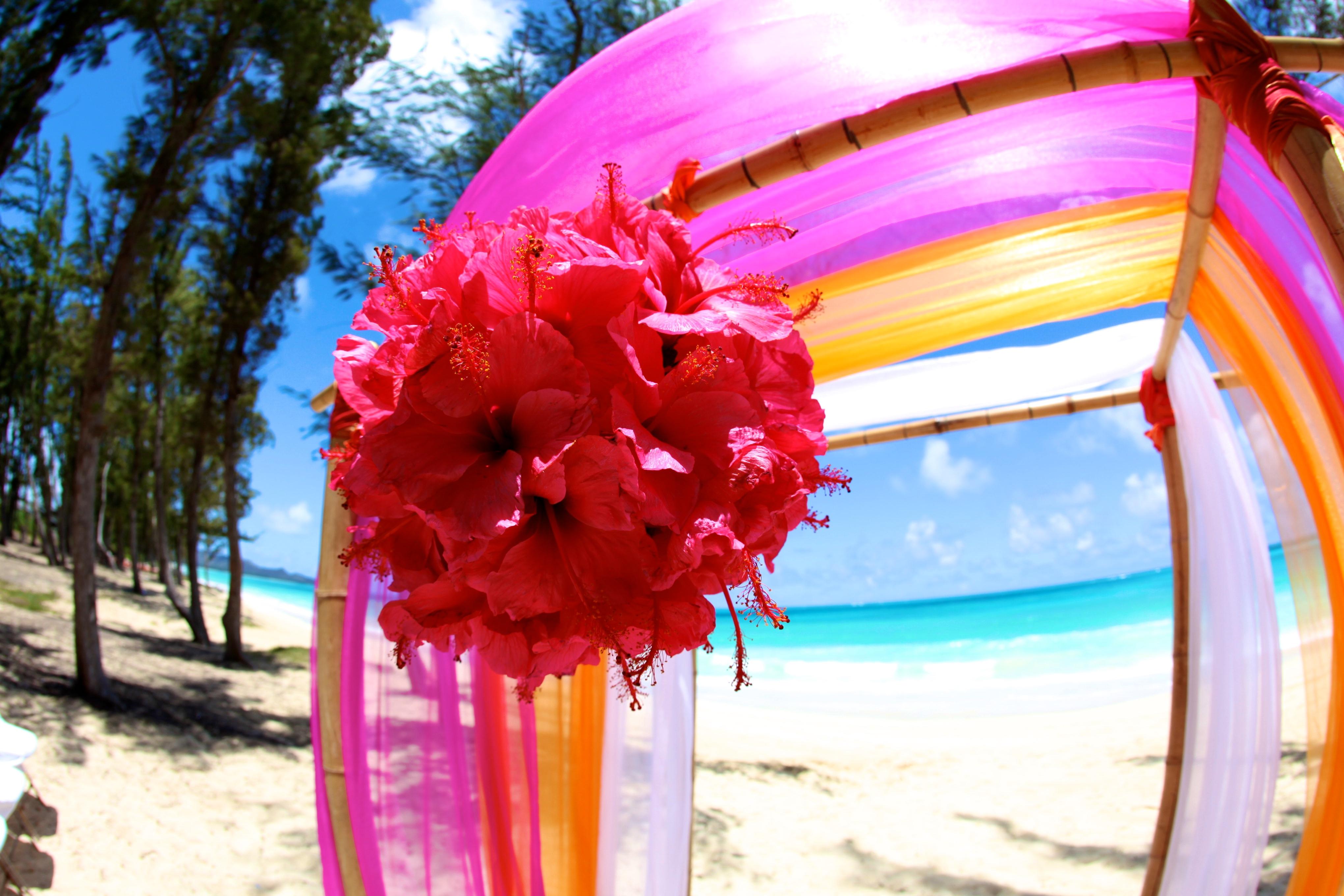 Hawaii Wedding Bamboo Arch