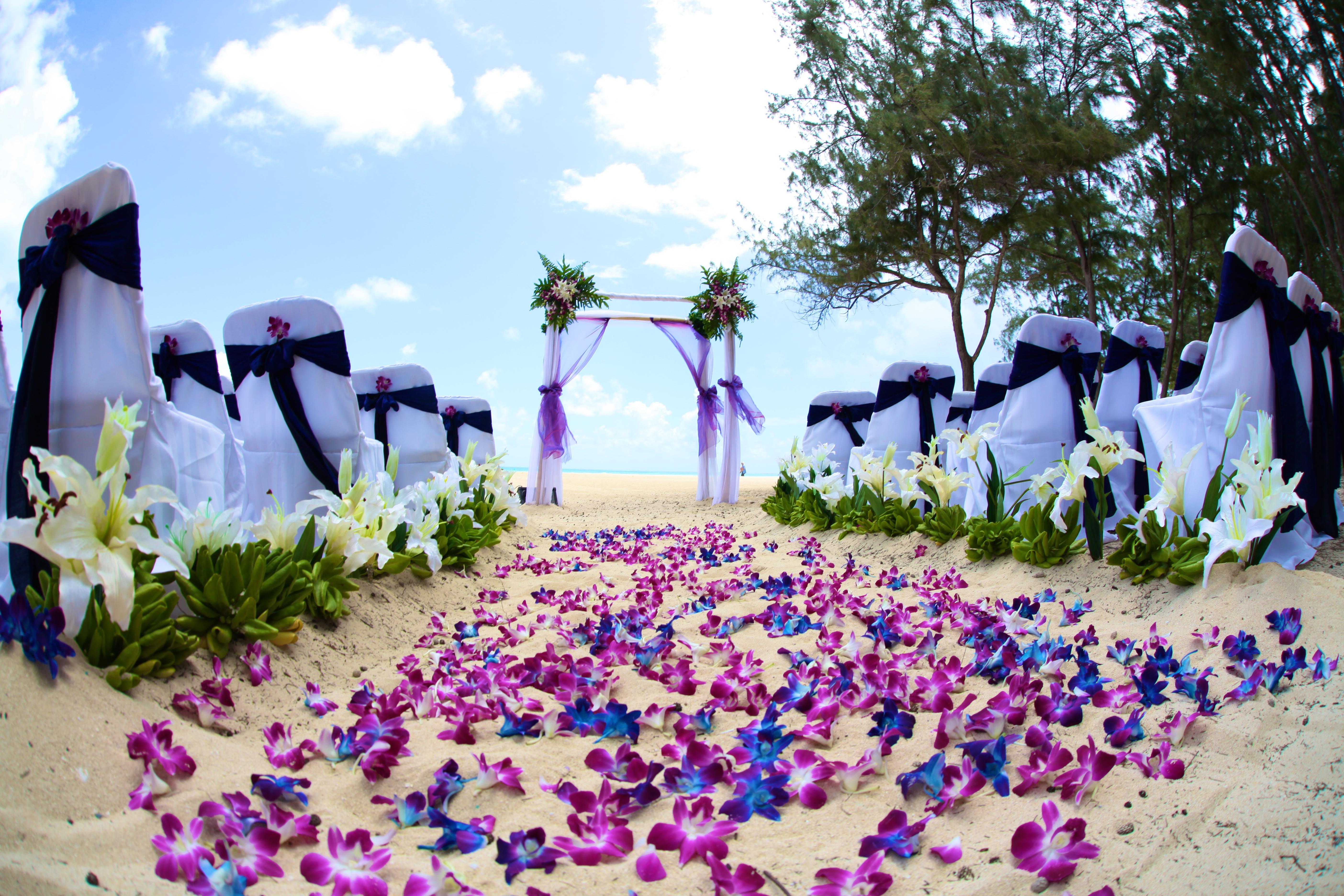 Hawaii wedding Bamboo Arch 4
