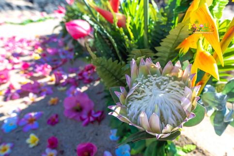 Vowrenewal-wedding-in-Hawaii-2-6.jpg