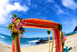 Wedding Picture1-9