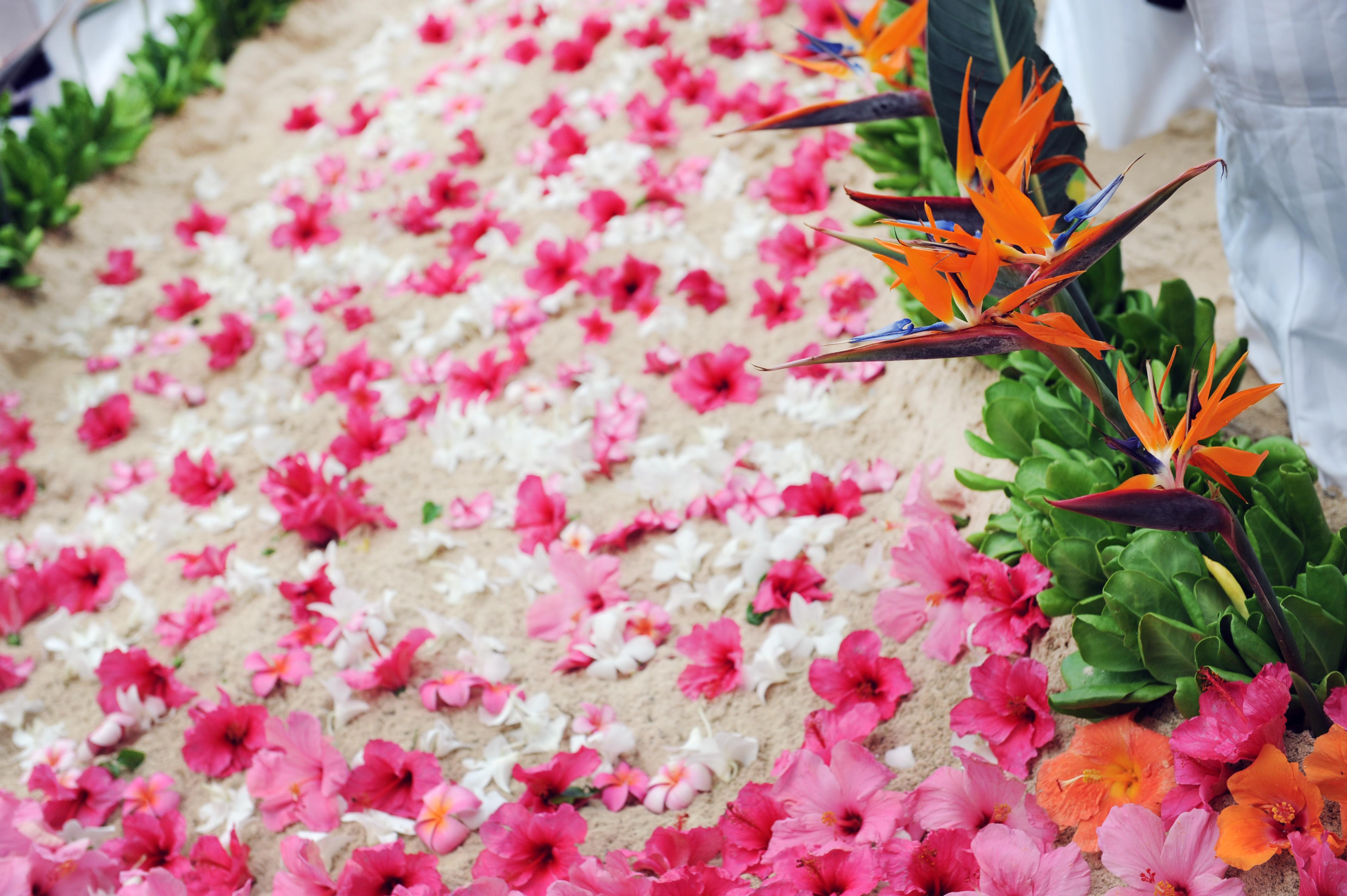 Chapel in the Sand Hawaii Wedding 7