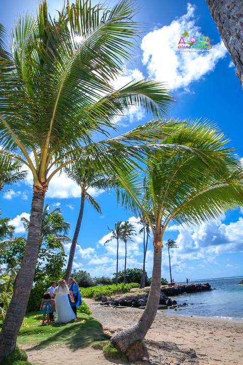 Kahala-beach-in-Hawaii-wedding-1-A-135.jpg