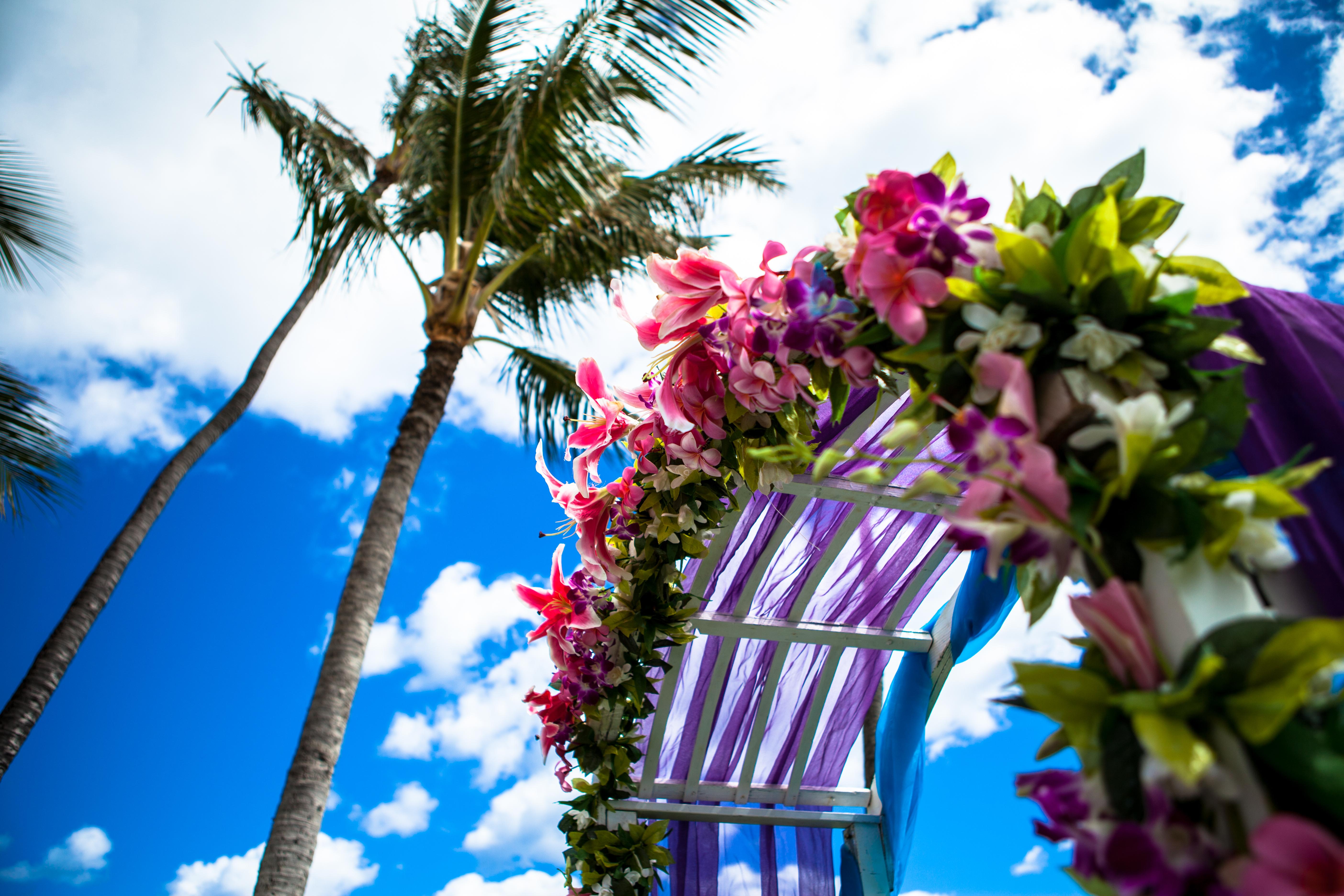 Disneyland in hawaii