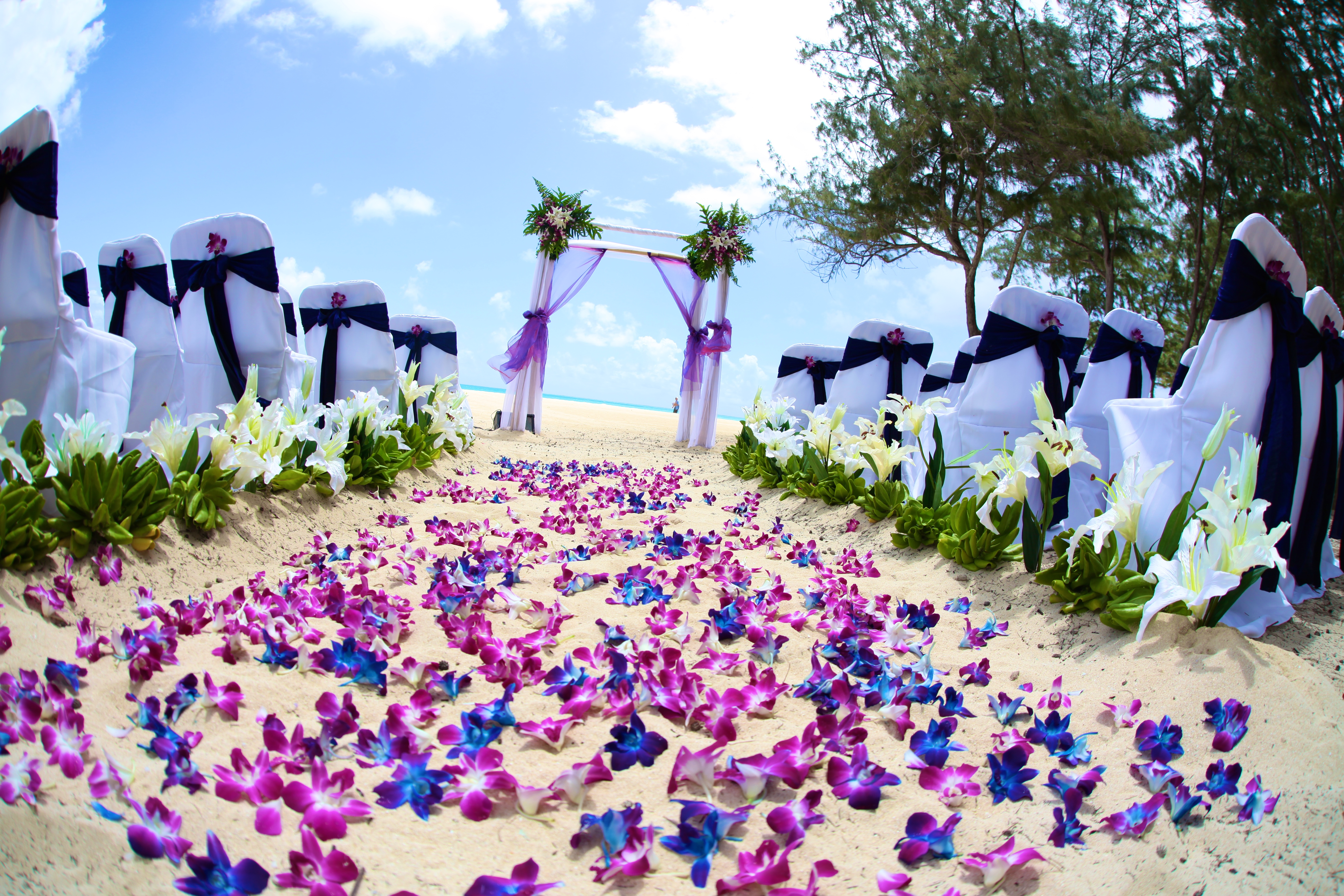 Orchid wedding in Hawaii6