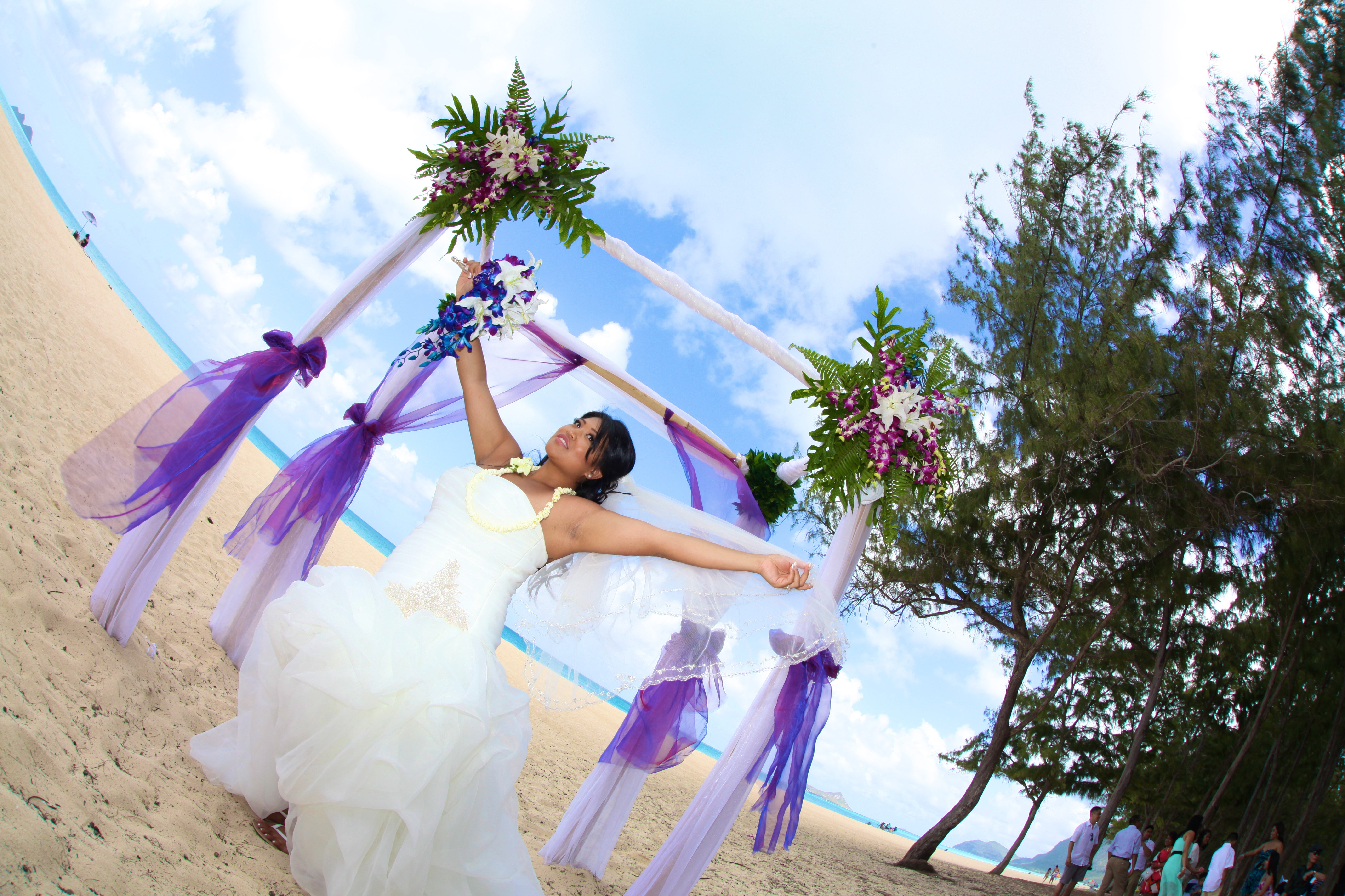 Hawaii wedding Bamboo Arch 3
