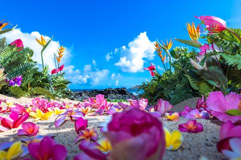 Vowrenewal-wedding-in-Hawaii-2-4.jpg