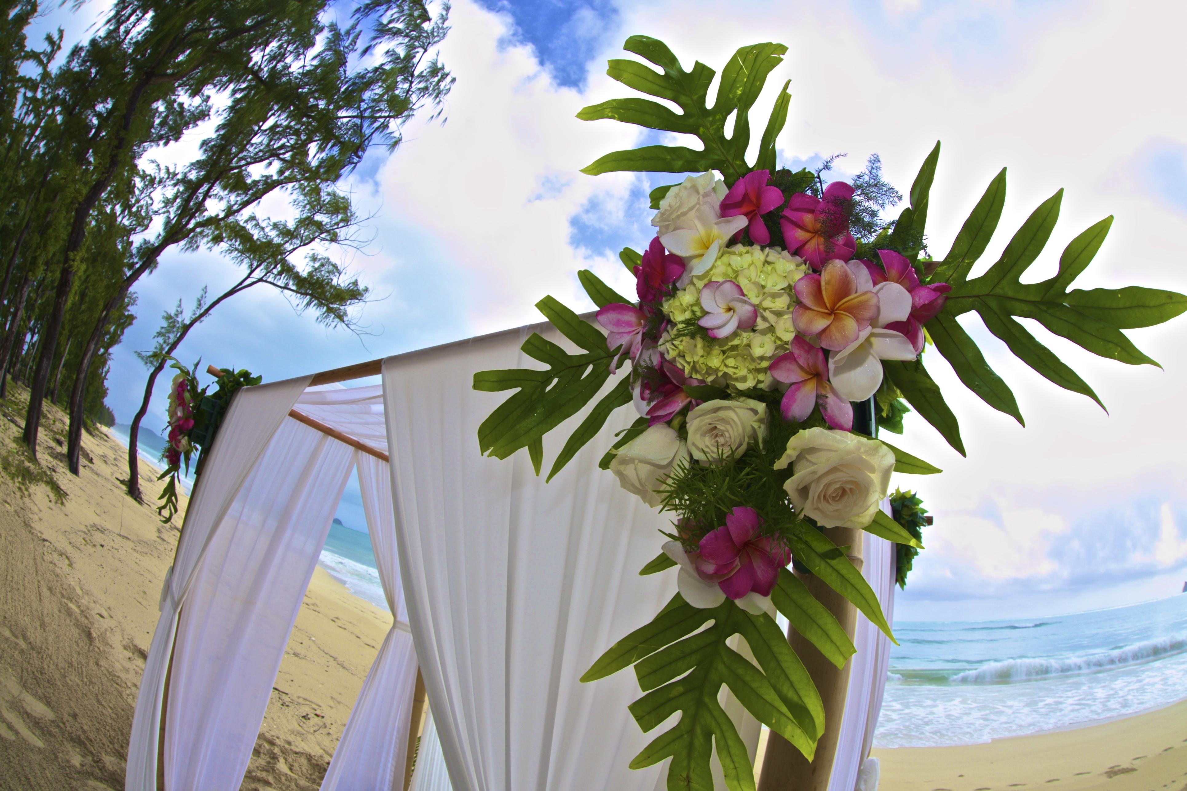 hawaii wedding ceremony -81