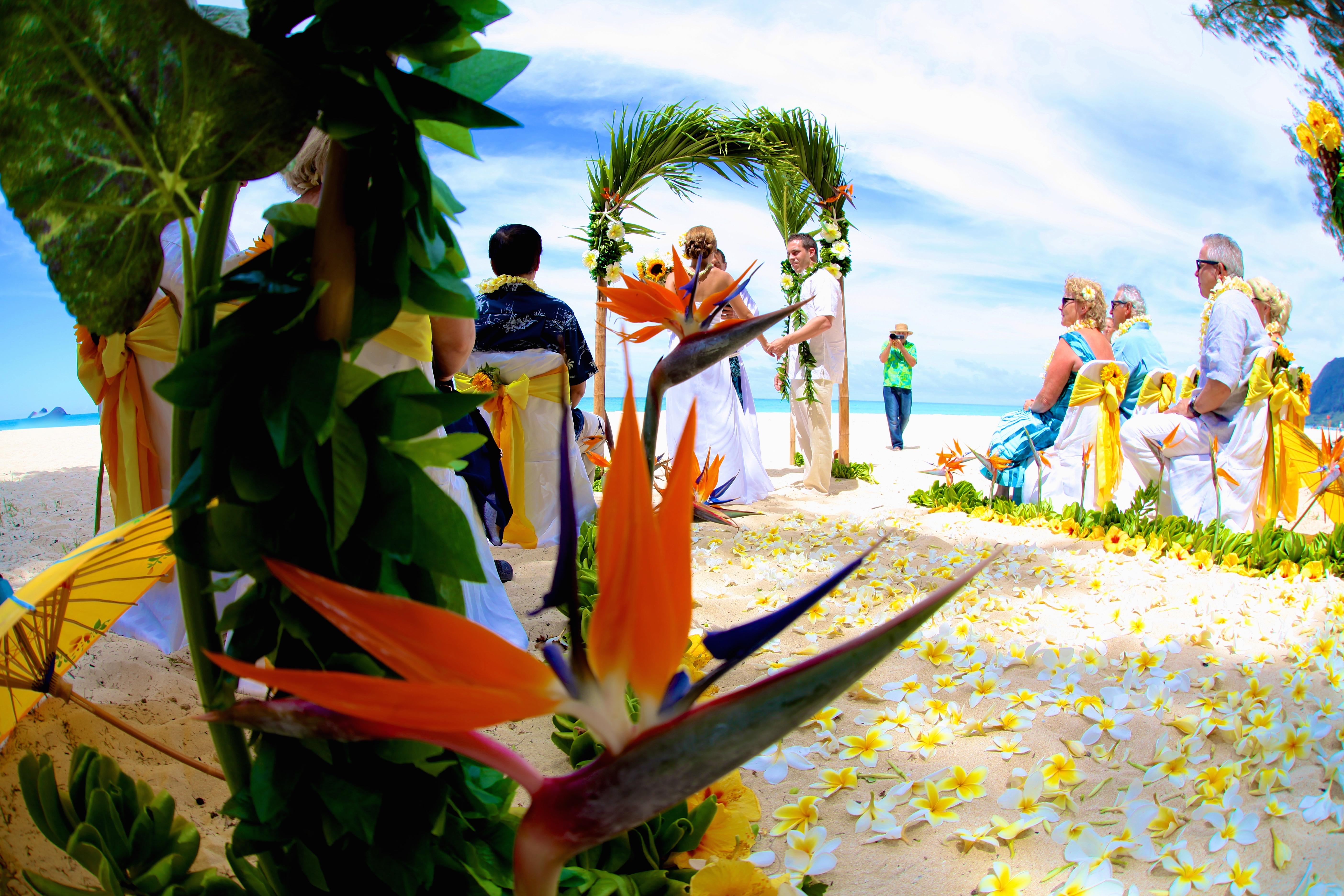 Beach wedding Hawaii 3