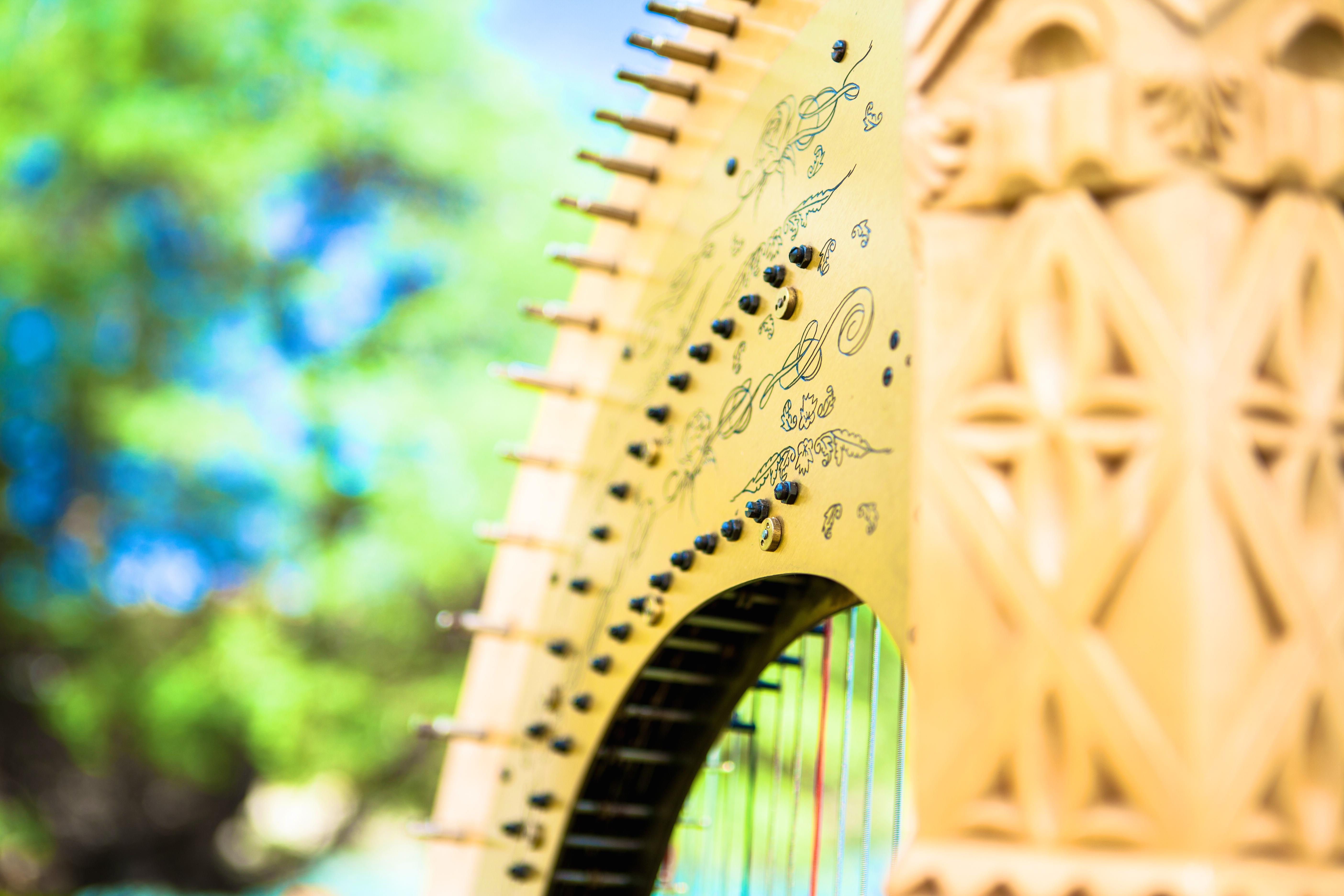 Harpist in Hawaii