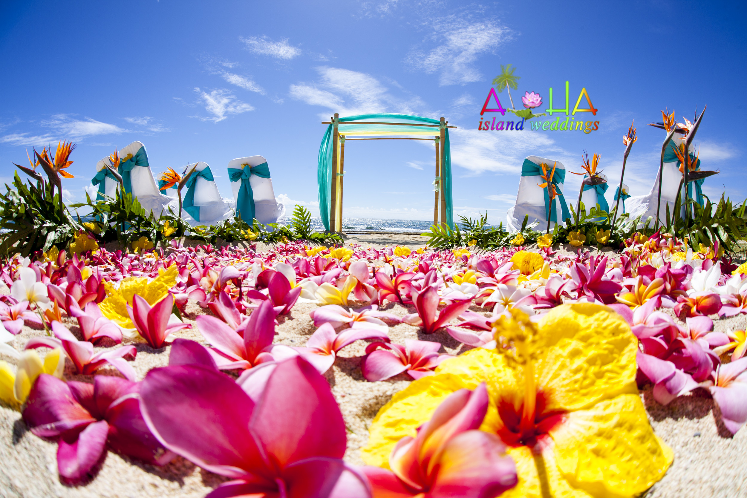 Hawaii Wedding Packages -88