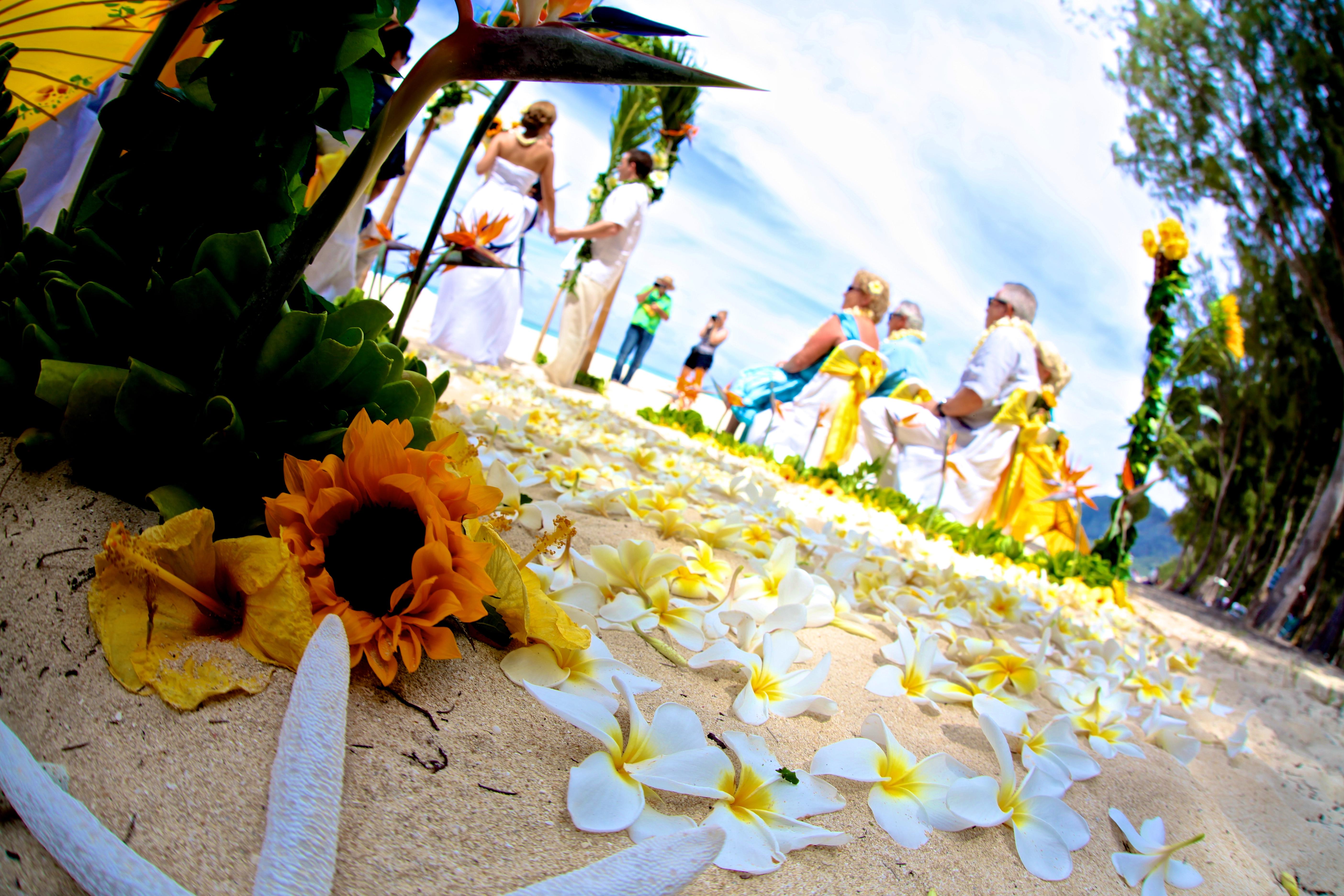 Beach wedding Hawaii 4
