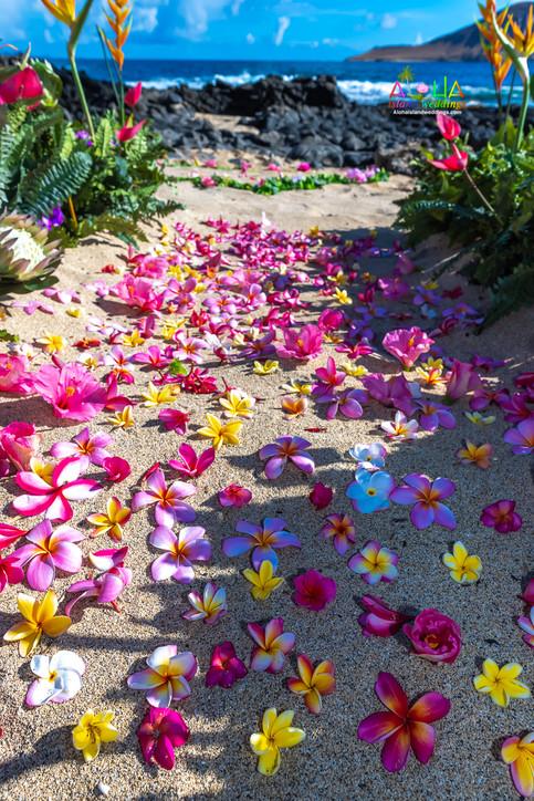 Vowrenewal-wedding-in-Hawaii-2-9.jpg