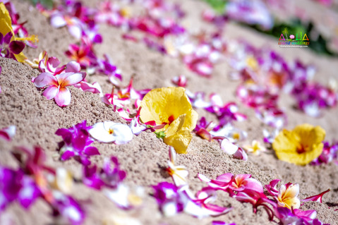 Hawaii-wedding-ceremony-JC-1-5.jpg