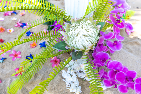 Kahala-resort-beach-in-Hawaii-2-29.jpg