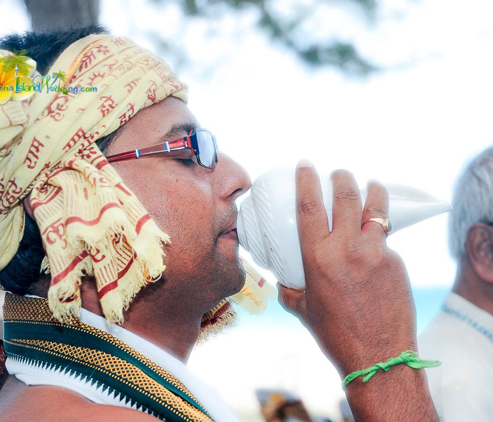 Indian wedding ceremony in hawaii-26.jpg