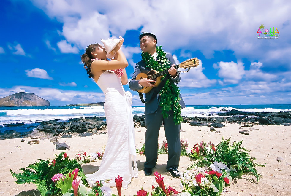 jb-wedding-at-makapuu-beach-1-33.jpg