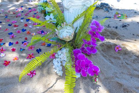 Kahala-resort-beach-in-Hawaii-2-9.jpg