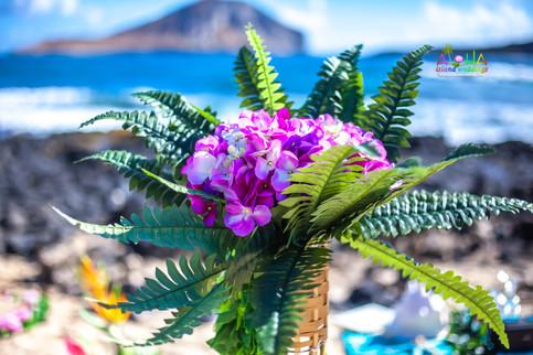 Vowrenewal-wedding-in-Hawaii-1.jpg