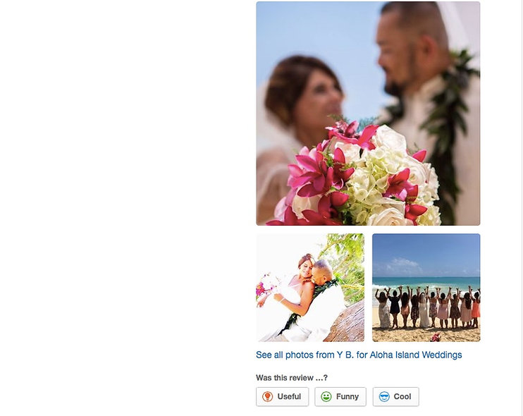 Hawaii Wedding review 92