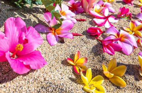 Vowrenewal-wedding-in-Hawaii-2-7.jpg