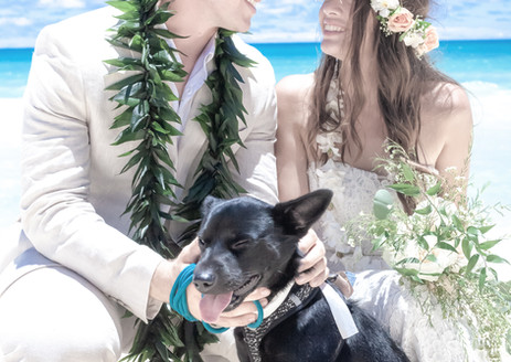 Megan-Austin Wedding Ceremony