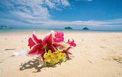 Alohaislandweddings- Lanikai wedding Picture -14