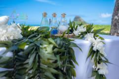 Honolulu-wedding-G&S-wedding-ceremony-12